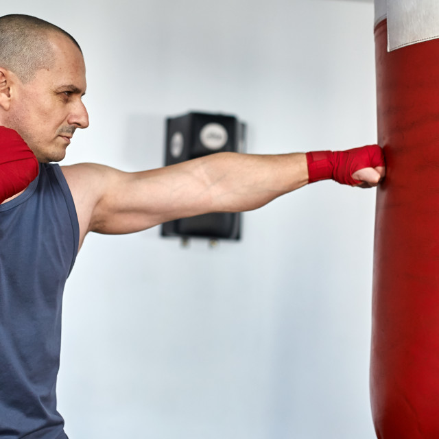 """""""Boxer training in a gym"""" stock image"""