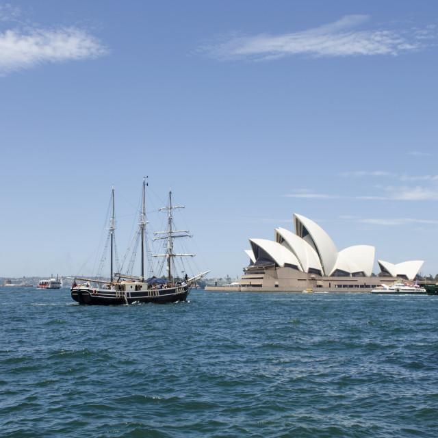 """""""Opera House Boat"""" stock image"""