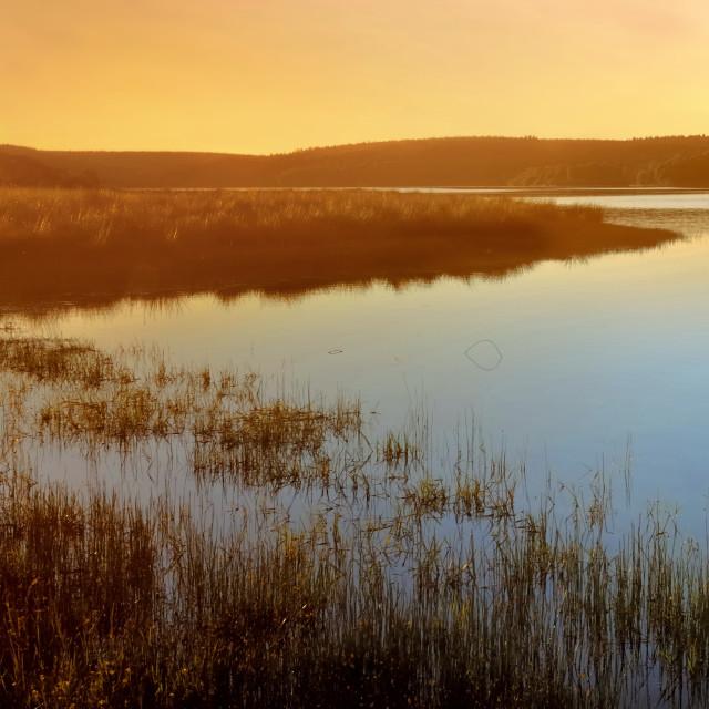 """""""beautiful sunset on a lake"""" stock image"""