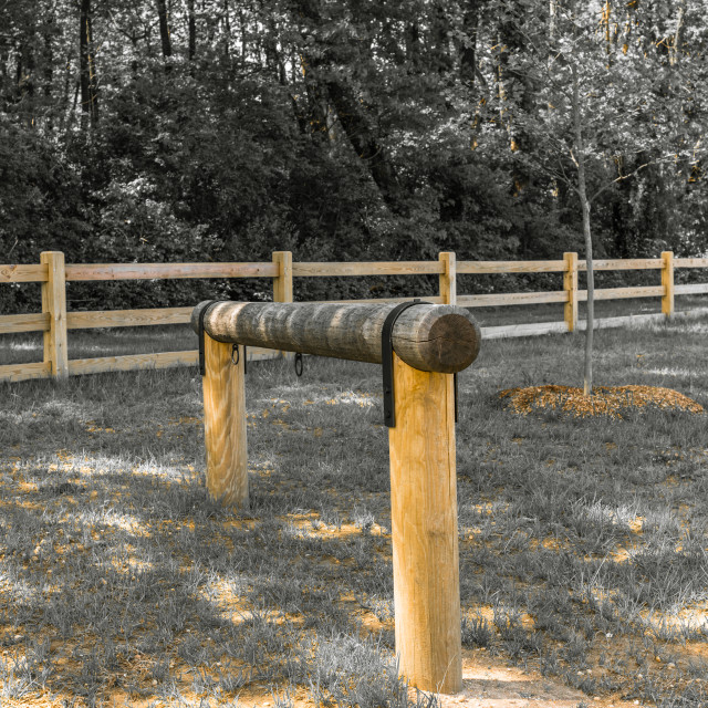 """""""Hitching Post in the Woods"""" stock image"""