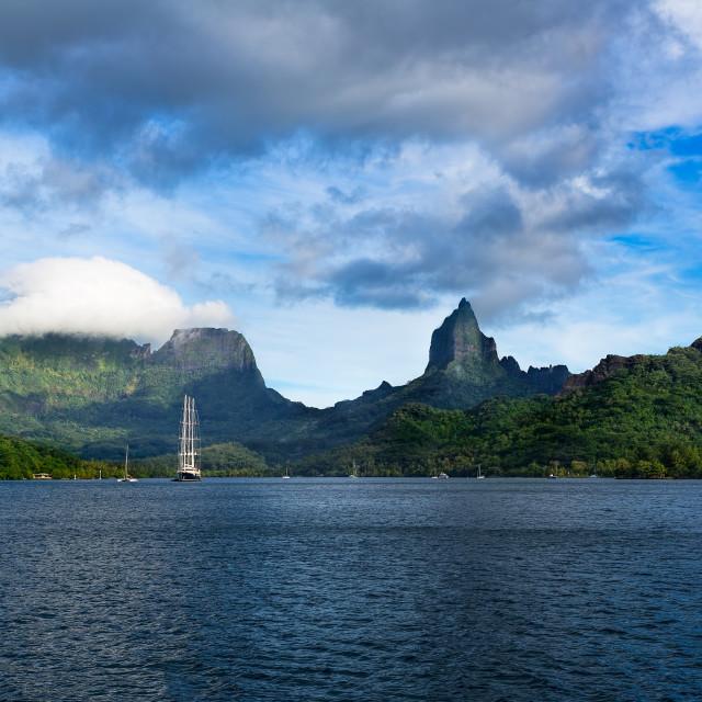 """Moorea Tahiti"" stock image"