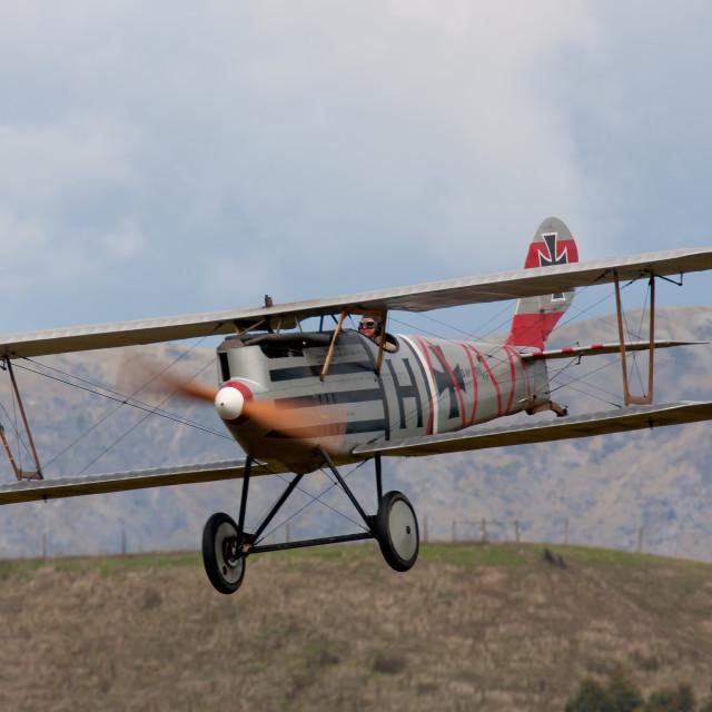"""PFALZ IN FLIGHT"" stock image"