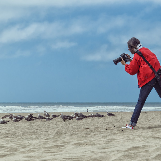 """Photographer in action"" stock image"