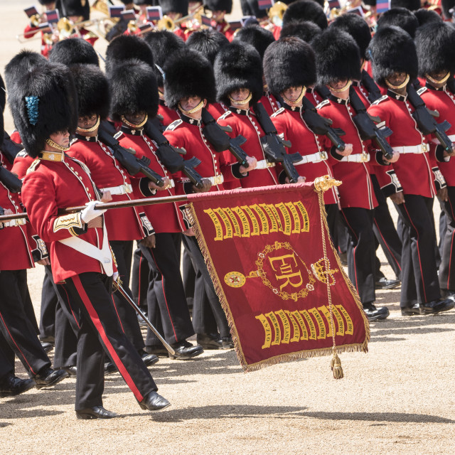 """Trooping the Colour 2017"" stock image"