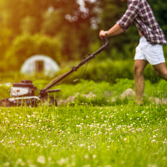 """Young man mowing lawn"" stock image"