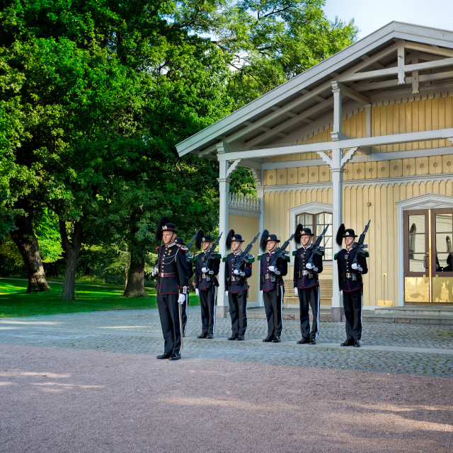 """Guards at the Royal Palace Oslo Norway"" stock image"