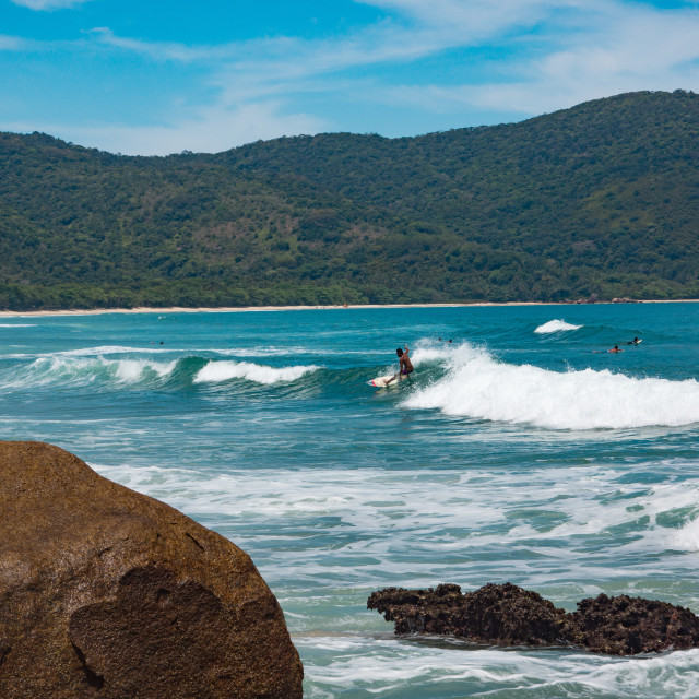 """Surfing Paradise"" stock image"