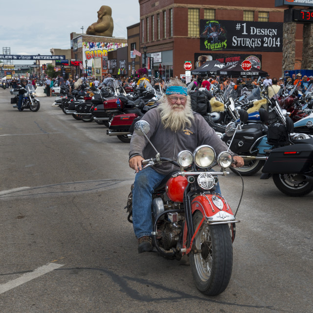 """Sturgis, South Dakota - August 8, 2014: Rider in the main street of the city of Sturgis, in South Dakota, USA, during the annual Sturgis Motorcycle Rally"" stock image"