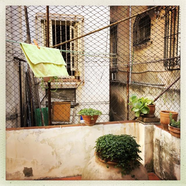 """""""Garden Interior"""" stock image"""