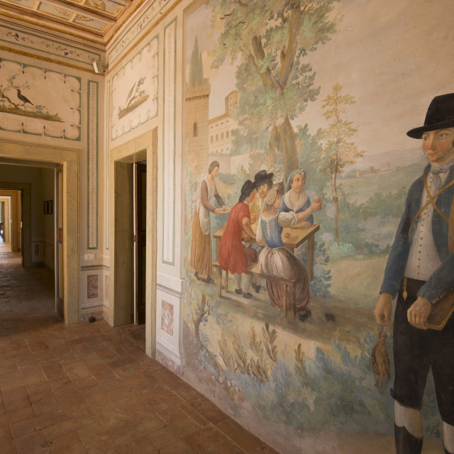 """Rooms frescoed in umbrian"" stock image"