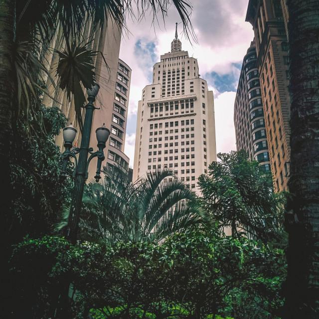 """""""Concrete Jungle"""" stock image"""