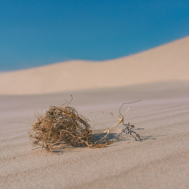 """Straw and Sand"" stock image"