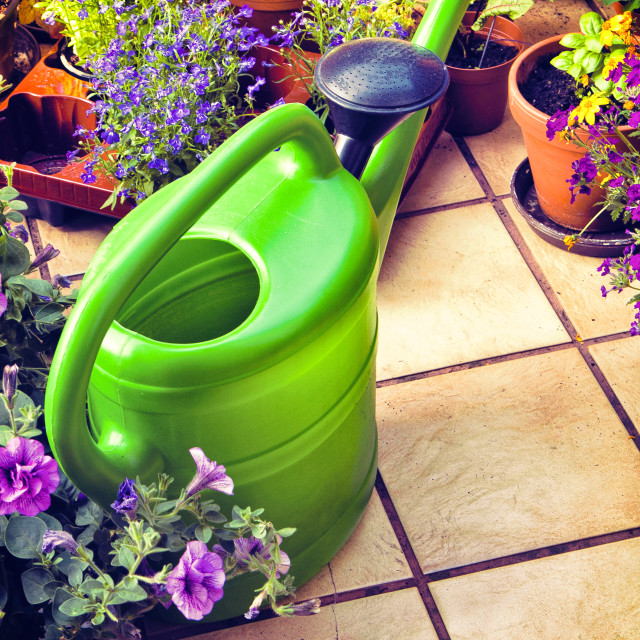 """""""leisure time, gardening on the terrace"""" stock image"""