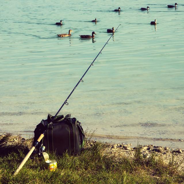 """fishing at the lake and swimming ducks"" stock image"