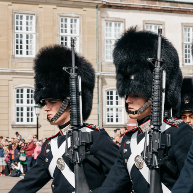 """Soldiers of the Danish Royal Life Guards for the changing of the"" stock image"