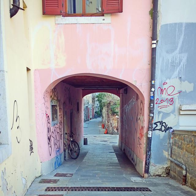"""Trieste, old town, pedestrian underpassage"" stock image"