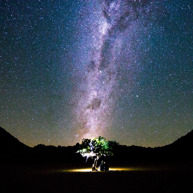 """""""Watching the Milky Way under a camelthorn tree in Namibia"""" stock image"""