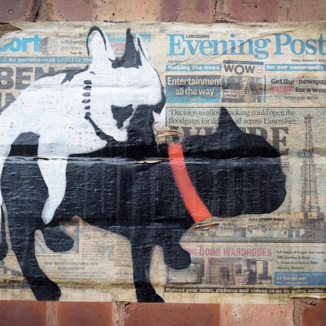 """""""Graffiti Manchester,UK."""" stock image"""