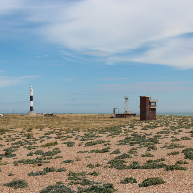 """""""Dungeness"""" stock image"""