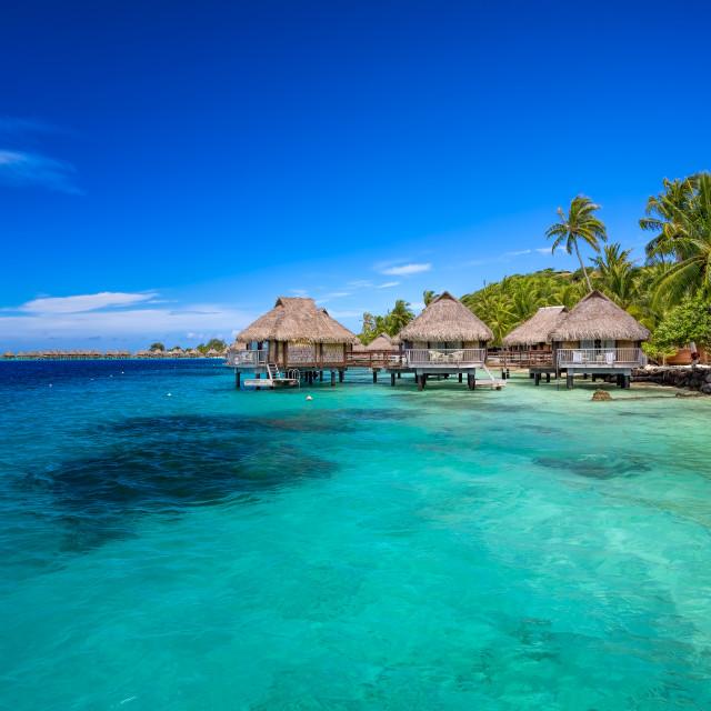 """""""Paradise Tahitian Style"""" stock image"""