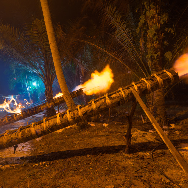 """Traditional cannon made from coconut tree"" stock image"