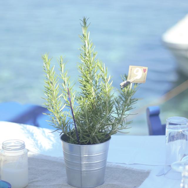 """""""Table Setting, Island Wedding"""" stock image"""