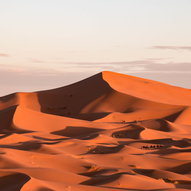 """Erg Chebbi in the Sahara Desert, Morocco"" stock image"