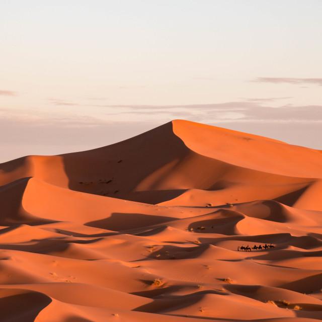 """Erg Chebbi in the Sahara Desert, Morocco"" stock image"