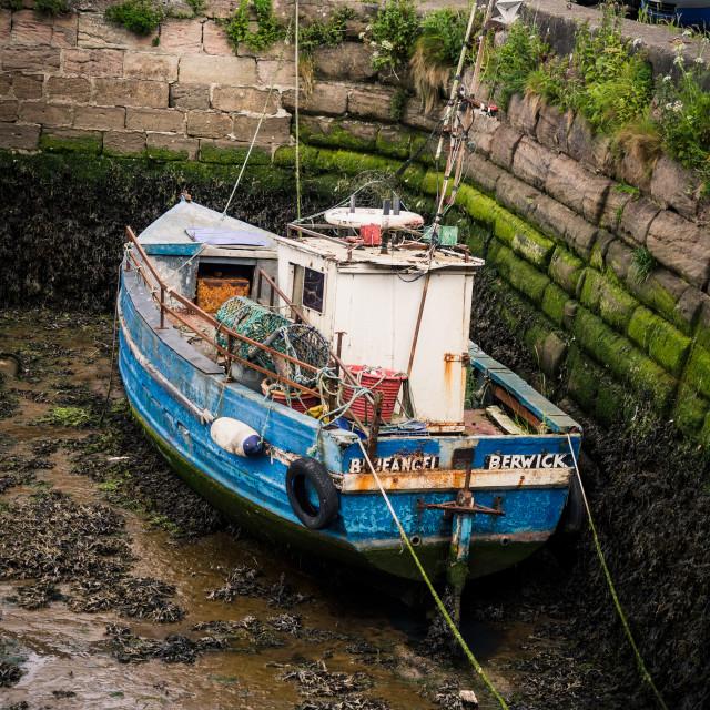 """""""Boat in the dock"""" stock image"""