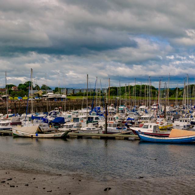 """Amble Harbour"" stock image"