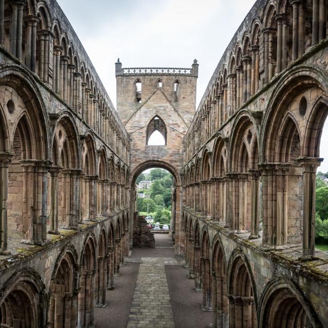 """Jedburgh Abbey"" stock image"