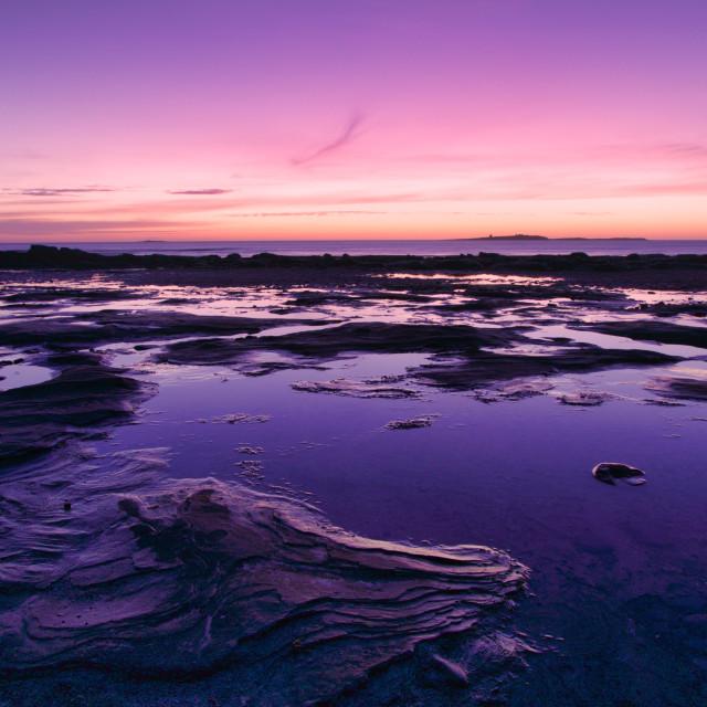 """Farne Island Sunrise"" stock image"