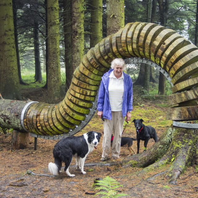"""""""The Pendle Sculpture Trail in Aitken wood, near Clitheroe, Lancashire, UK."""" stock image"""