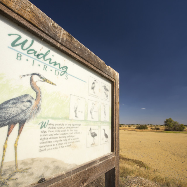 """""""A sign about wading birds in the Kern Valley Wildlife Refuge in California's..."""" stock image"""