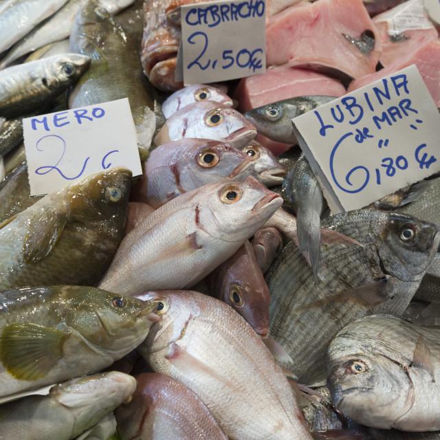"""""""Fresh fish in the Mercado Central de Abastos food market, Jerez de la..."""" stock image"""