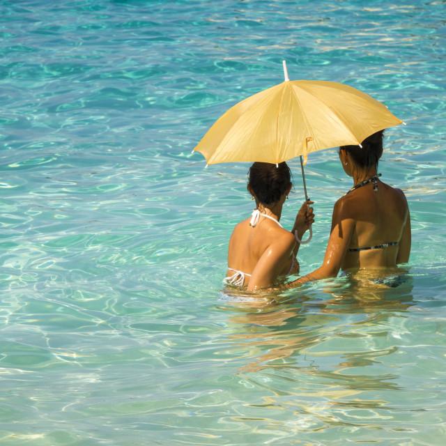 """Women under an umbrella 4"" stock image"