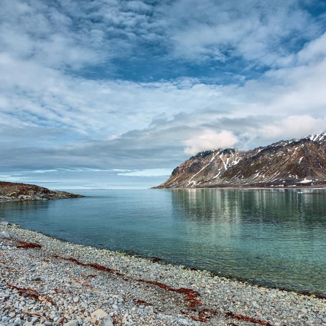 """Magdalenafjord in Svalbard islands, Norway"" stock image"