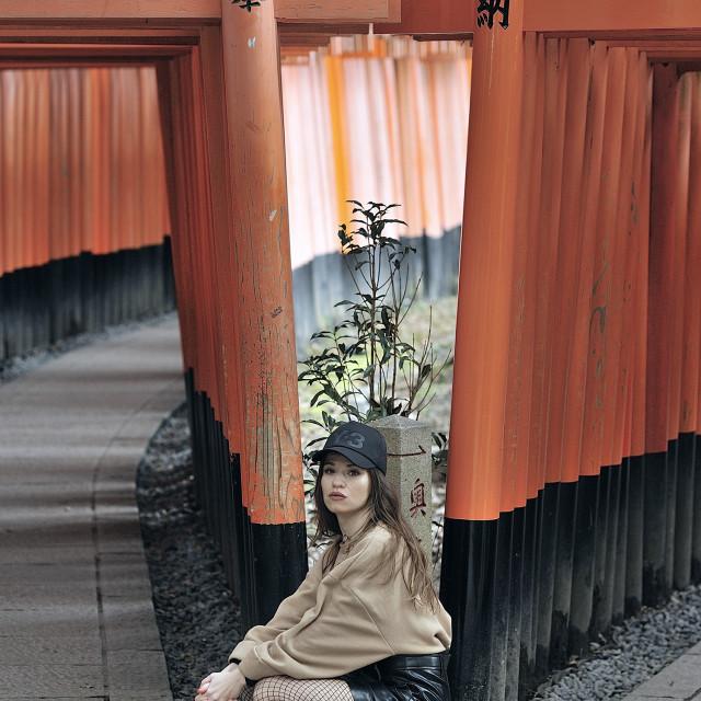 """""""Fushimi Innari"""" stock image"""