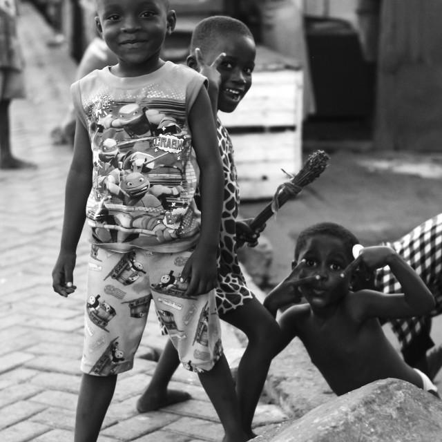 """Africa's Pride"" stock image"