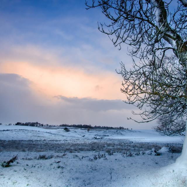 """WINTER IN WEST LINTON, SCOTLAND"" stock image"