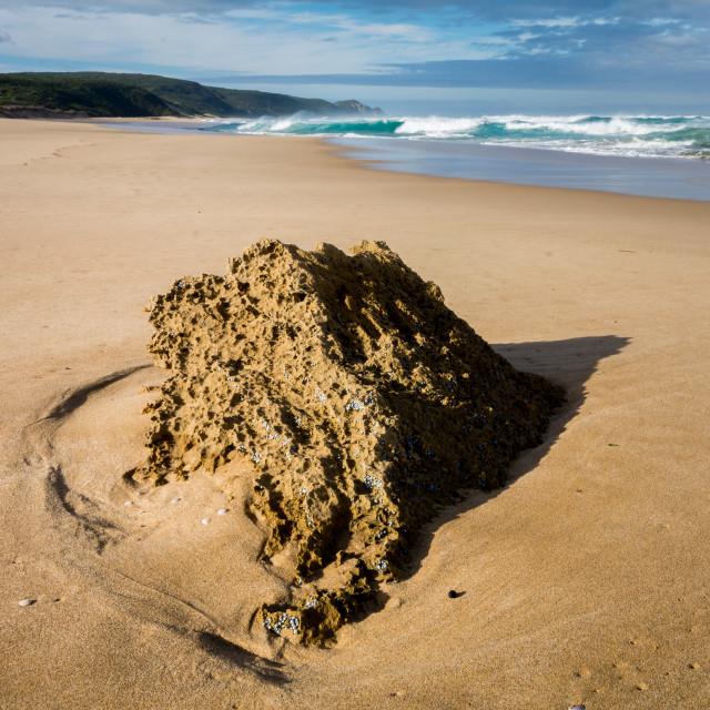 """Johanna Beach"" stock image"
