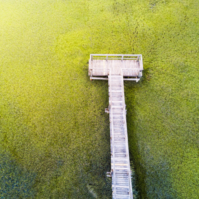 """Wooden bridge over a swamp from above"" stock image"