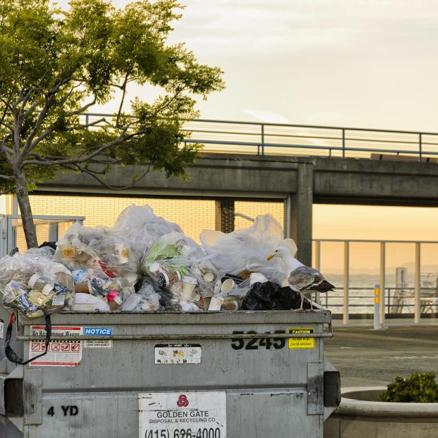 """""""Skip full of trash"""" stock image"""