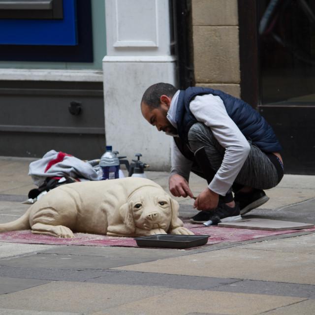 """""""Pretend Dog, Petty Cury, Cambridge"""" stock image"""