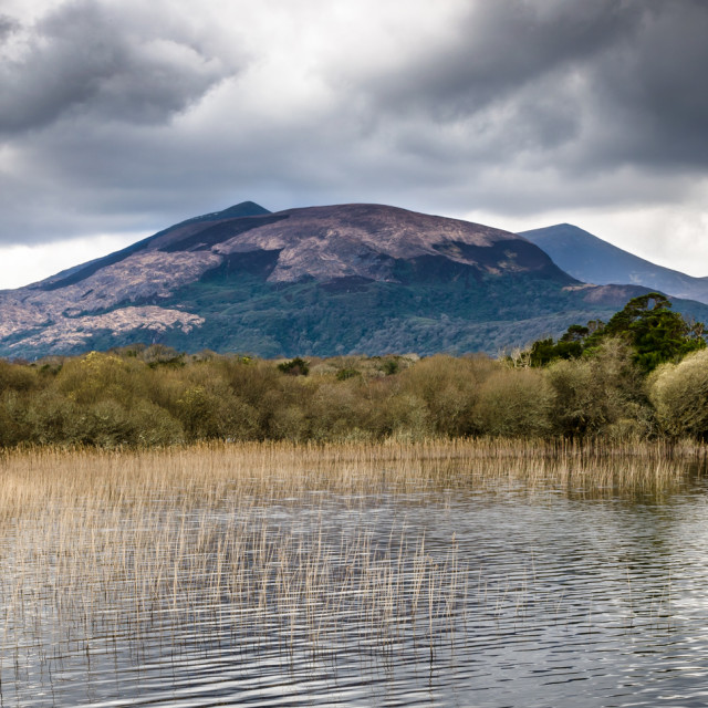 """Killarney National Park"" stock image"