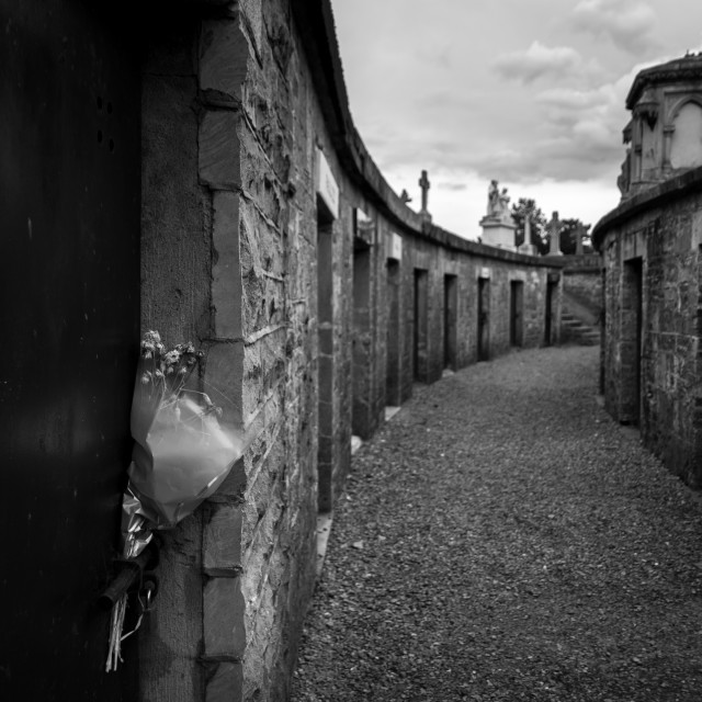 """Glasnevin Cemetry"" stock image"