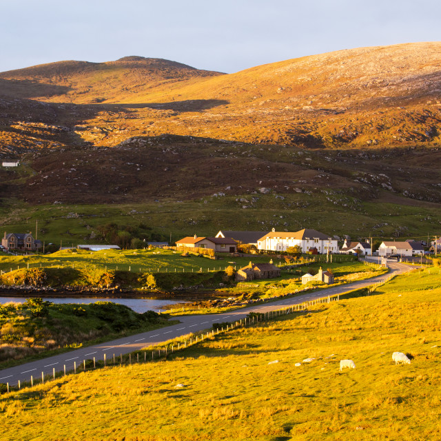 """""""A row of houses in Leverburgh, Isle of Harris, Outer Hebrides, Scotland, UK,..."""" stock image"""