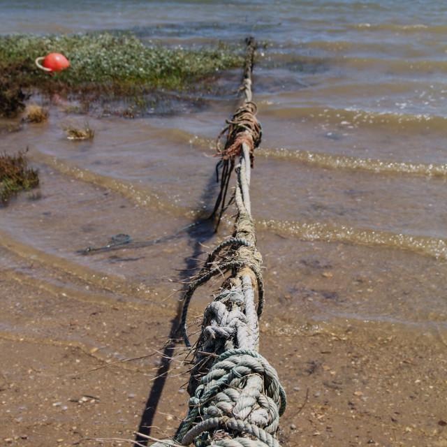 """Mooring Rope"" stock image"