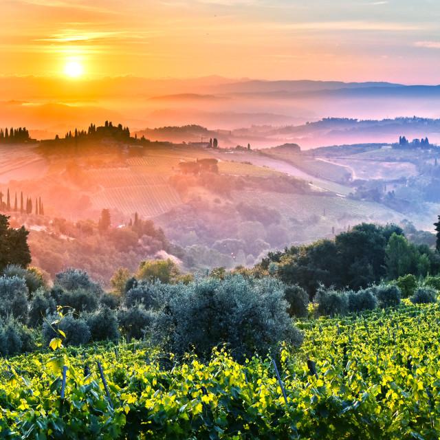 """Landscape view of Tuscany, Italy during sunrise"" stock image"