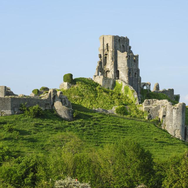 """Corfe Castle, Dorset"" stock image"